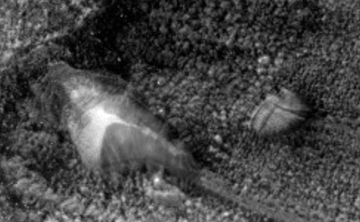 Derelict crashed disc-like craft inside of Martian crater