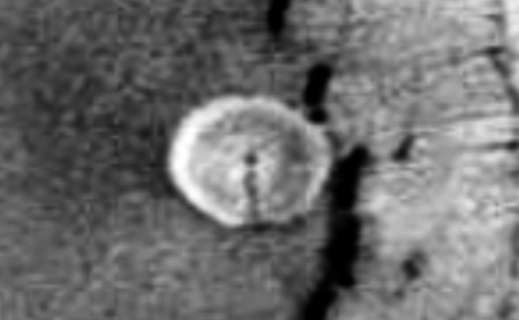Semi-translucent disc on Mars (zoomed view)