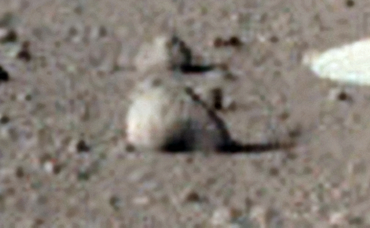A stone disc-like anomaly photographed by InSight on Sol 8