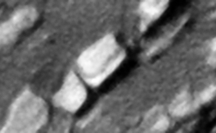 Two megalithic blocks with perfectly rounded corners