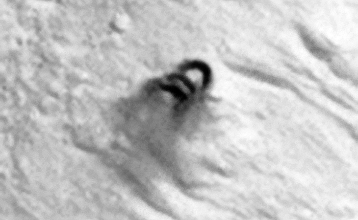 Strange disc-shaped objects, Air-Vent or Rocks? These objects appear to be leaving a dark-coloured stain on the Martian surface. Might those geometric patterns in the slightly darker ground located to left and slightly above the disc-shaped objects be ruins?