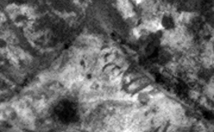 'Radiation warning' symbols carved into Martian surface