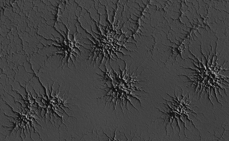NASA calls this an 'Inca City' on Mars: 'Spiders'