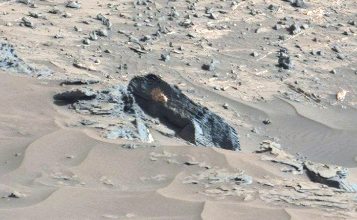Another life form clinging to a Martian rock