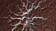 Isolated Araneiform Topography
