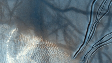 Dust Devils Dancing on Dunes