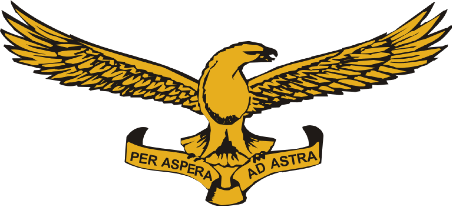 South African Air Force (SAAF) Emblem