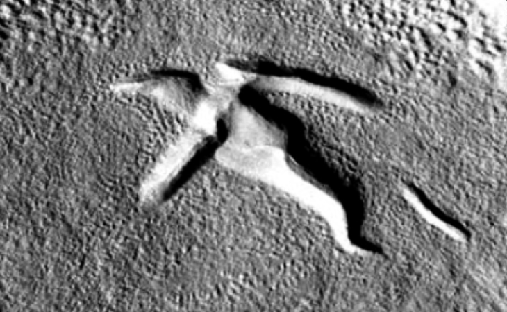Giant bird sculpture found on Mars?